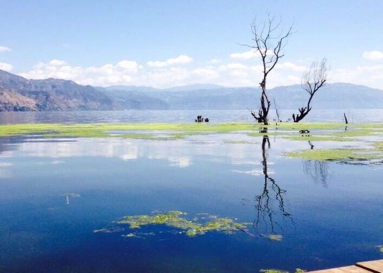 Lake Mountain Water Reflection Nature Day Scenics Tranquil Scene Landscape Outdoors Tranquility Mountain Range Tree Beauty In Nature No People Sky Perfection Guatemala Atitlan Lake