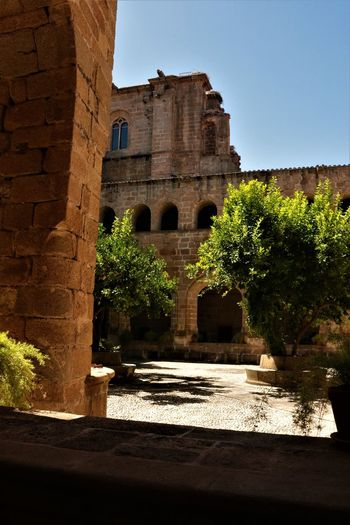 Tree No People Claustro History Architecture Building Exterior Built Structure Fort Fortified Wall Arch Historic