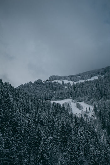 View of a snow