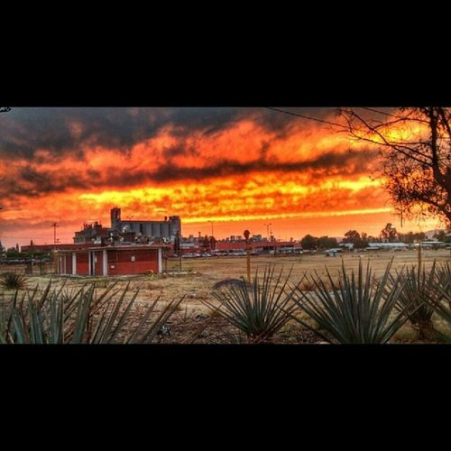 Cielo encendido! Burning sky! Alfredbass Sunset Factory Quer étaro fabrica atardecer