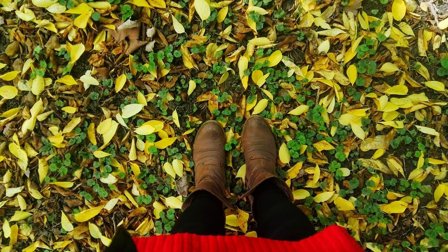 Boots Autumn Leaf Leaves Change Day Nature Human Body Part Yellow Outdoors Beauty In Nature Low Section One Person Close-up High Angle View EyeEm Nature Lover Capture The Moment EyeEm Best Shots - Nature Colors Green Color Growth Grass Multi Colored People Naturelovers Go Higher Inner Power