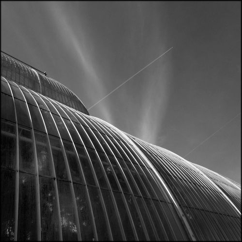 Abstract Architectural Feature Architecture Building Exterior Built Structure Circle Connection Design Fish-eye Lens Fuji X Glass Glass - Material Kew Gardens Low Angle View Modern Monochrome Photography Red Filter Round Shape Shiny Speed Sphere Victorian Greenhouses