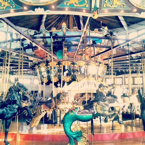 never too old for a carousel