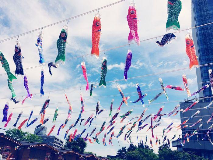 こいのぼり Sky Hanging Multi Colored Celebration Cloud - Sky Decoration Low Angle View Day No People Wind Event Festival