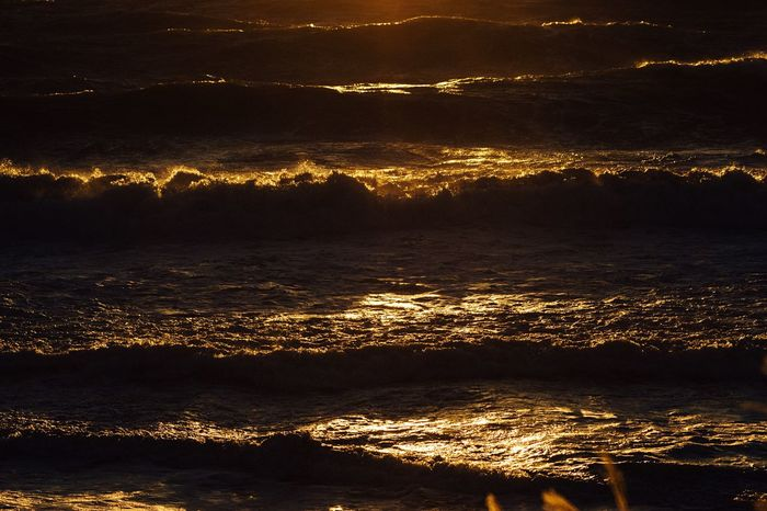 Golden Wave 🌊 Waves, Ocean, Nature Sunlight ☀️ 🌅 Reflection Sunset Sunset Reflection Beauty In Nature Power In Nature Sea After The Storm No People Nature Beach Windy Day Winter Sea Hayama Kanagawa Japan Kanagawa,japan January January 2017