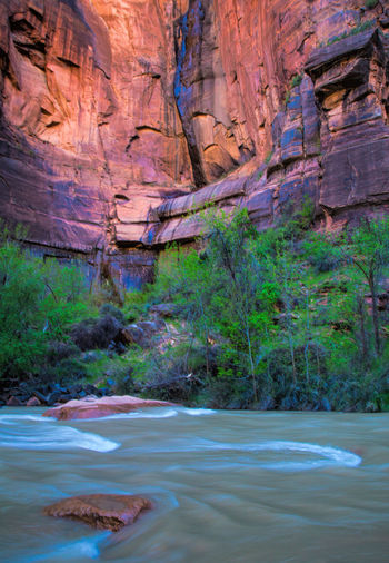 Virgin river flowing by canyon at zion national park