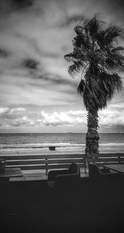 St Kilda, Melbourne The Great Outdoors - 2018 EyeEm Awards Water Sea Tree Beach Storm Cloud Sky Horizon Over Water Cloud - Sky