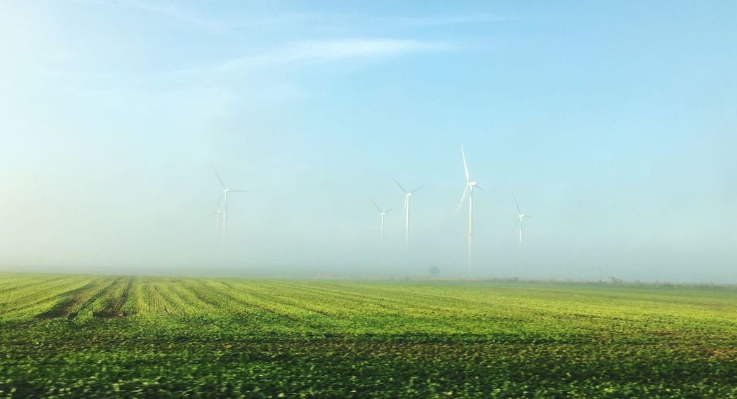 A little taste of Fall . Renewable Energy Alternative Energy Wind Power Landscape Field Manchesagensomanchesagenso