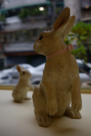 Ceramic Rabbit Coffee Shop FUJIFILM X-T2 Taiwan Animal Themes Cafe Cafe Time Ceramic Close-up Focus On Foreground Fujifilm Fujifilm_xseries Indoors  No People Rabbit Taipei X-t2 うさぎ カフェ 兔 兔子 台北 台湾 臺灣 陶器
