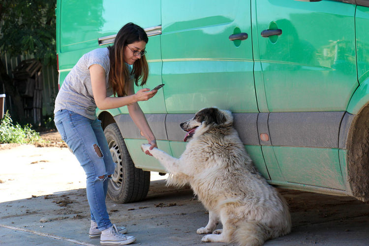 Full length of woman photographing dog while shaking hand by camper trailer on street