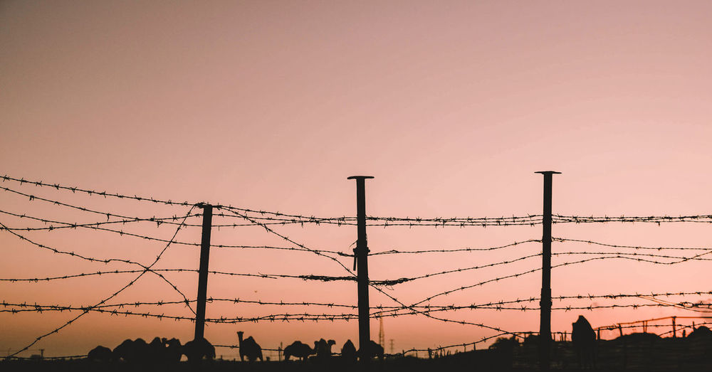 Low angle view of silhouette fence against sky during sunset