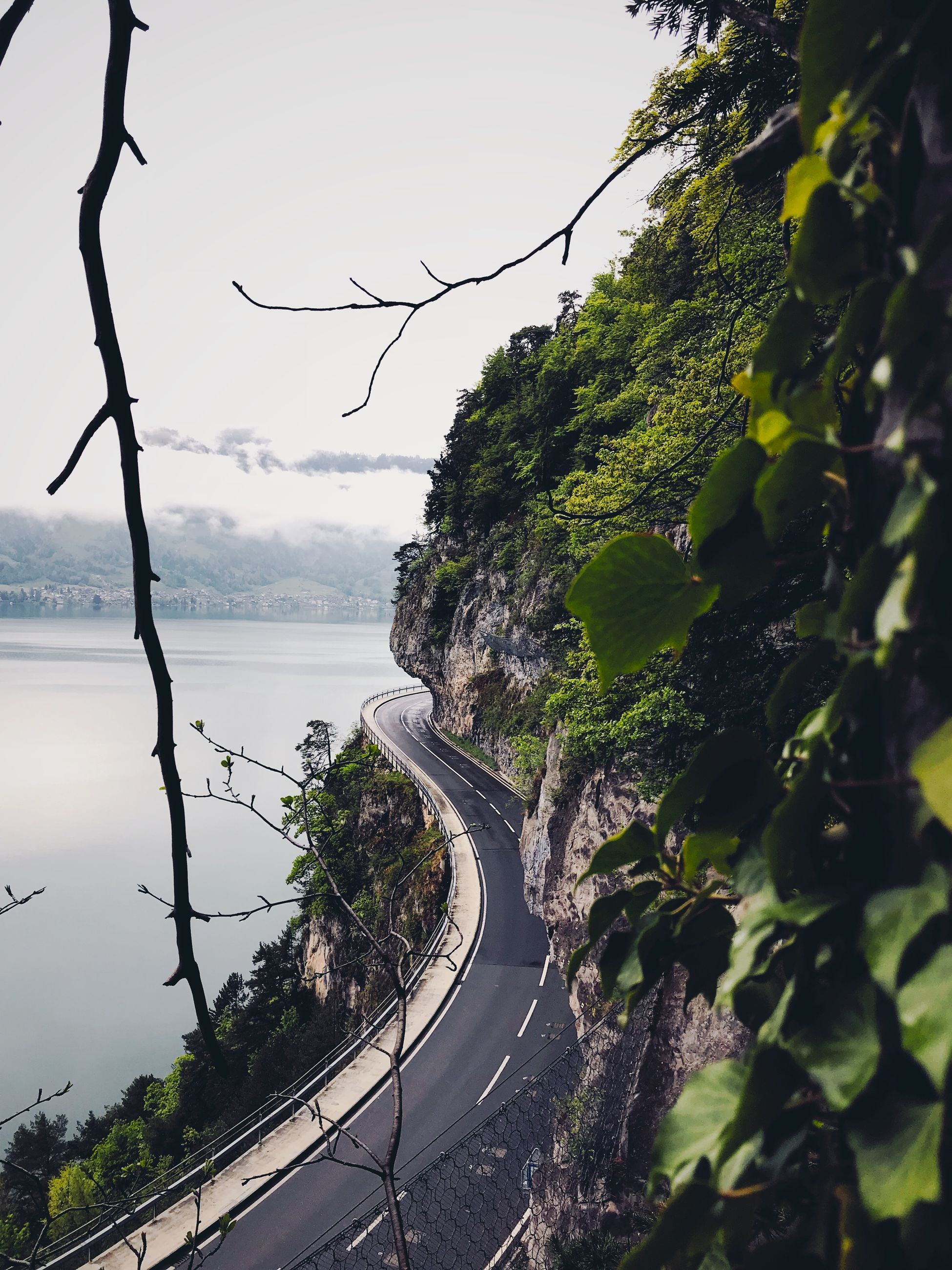 tree, road, transportation, nature, plant, water, day, no people, sky, beauty in nature, connection, green color, growth, outdoors, scenics - nature, high angle view, mountain, mountain road, curve