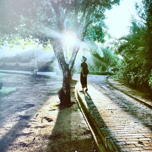 Follow the light Full Length Sunlight Lens Flare Sunbeam Real People Outdoors Day One Person Sun Nature Tree Water One Man Only Adults Only Adult People Your Ticket To Europe