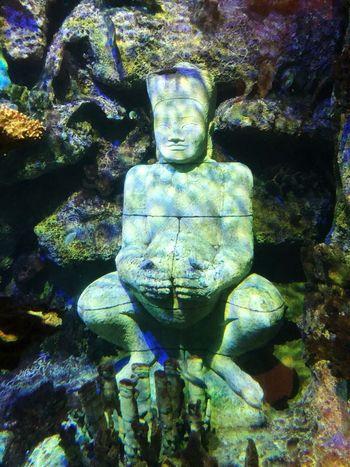 Representation Art And Craft No People Sculpture Human Representation Creativity Statue Male Likeness Backgrounds Marine Nature Close-up