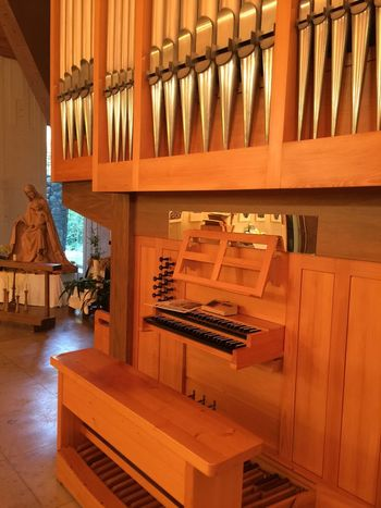 Architecture Carpentry Concert Hall  Day Hardwood Home Improvement Indoors  Library Luxury Modern No People Timber Wood - Material Wood Paneling