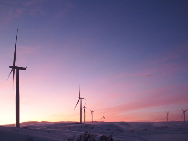 From Abisko to Narvik. Enjoying The View It's Cold Outside Morning No People Outdoors Renewable Energy Showcase: January Sky Snow Sunrise Taking Photos Technology Travel Travel Photography Traveling Wind Turbine Winter My Favorite Photo The Great Outdoors - 2016 EyeEm Awards Shades Of Winter