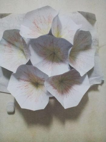 I made this pop up flower but i kinda did pretty fail so yeah!