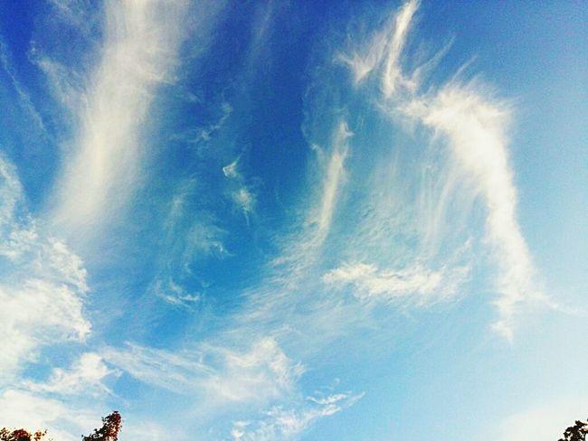 Today's sky... Love it.. Skyporn Sky And Clouds Sky Blue Sky Summer ☀ Hot