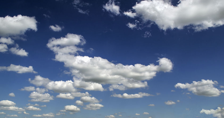 Backgrounds Beauty In Nature Blue Cloud Cloud - Sky Cloudscape Day Fluffy Full Frame Idyllic Low Angle View Nature No People Outdoors Scenics Sky Sky Only The Natural World Tranquil Scene Tranquility White Color
