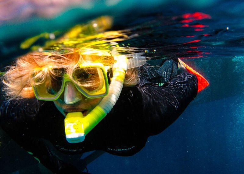 Adventure Club Snorkelling Great Barrier Reef Australia Queensland Water Underwater Underwater Photography
