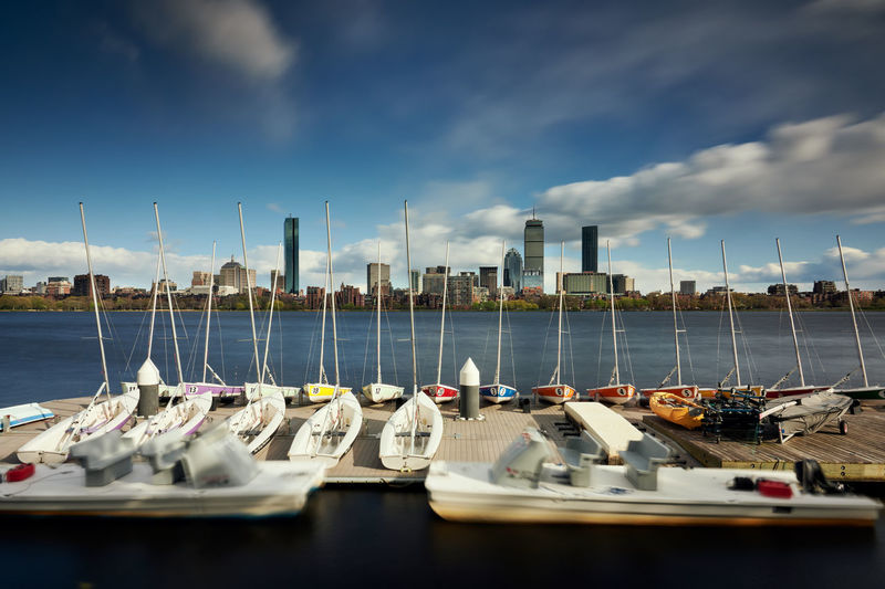 Sailboats moored in marina with city skyline in the distance