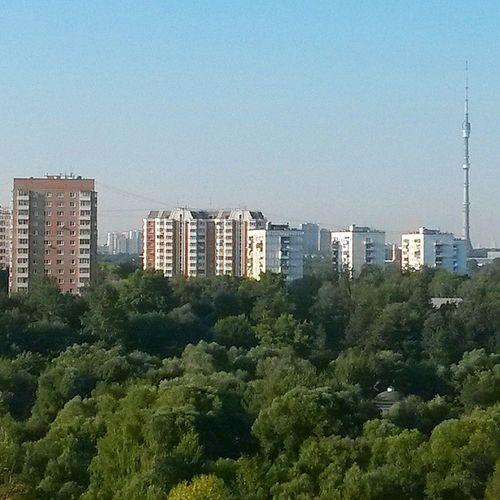 Доброе утро! Большой город просыпается! мск Москва утро город msk moscow morning city