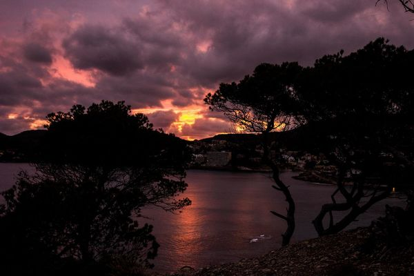 Beauty In Nature Burning Sky Burning Sky Sunset Cloud - Sky Landscape Mallorca Mountain Nature No People Outdoors Peguera Scenics Silhouette Sky Sunset Tranquil Scene Tranquility Tree Water
