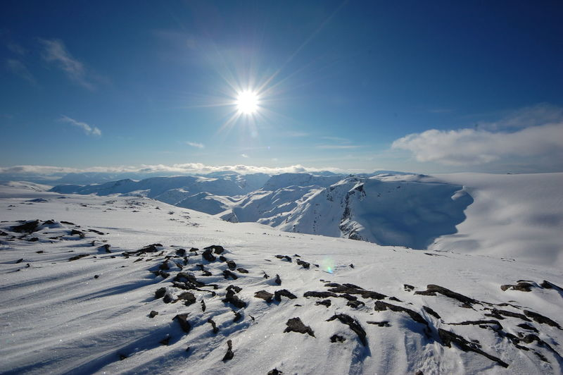Snow Cold Temperature Winter Landscape Mountain Scenics Nature Sunlight Mountain Peak Mountain Range Beauty In Nature Highaltitude Norway Polar Climate Glacier Øksfjordjøkelen Tranquility Idyllic Extreme Terrain Beauty In Nature Outdoors