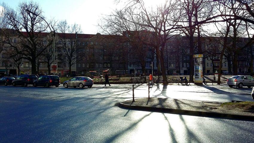 HometownStreetphotography Berlin Shadows Shadows & Lights Neukölln Street Life Trees And Sky Wintertime Winter