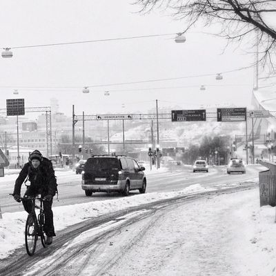 Fcuking crazy Swedes! :D Gothenburg Monochrome Streetphotography Bw People Man Candid Sweden Morning Goteborg Blackandwhite Gente Cycling Bnw Bike Nieve Portrait Bn Winter Monochromatic Bicicleta Bici Bicycle Snö  Snow Sverige Streetphoto Ig_sweden Cyclist Igersgothenburg