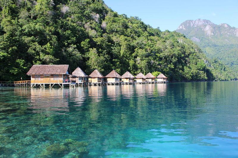 Ambon Pulau Ora Wonderful Indonesia Wonderful Indonesia Sobeautiful Indonesia_photography Seaview Ocean Green Blue Underwater Photography Photography BestScenery Wonderful Indonesia Sea And Sky Landscape_photography