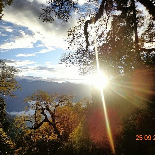 Sun Morning Nepal Langtang Forest Clouds And Sky Hills In The Forest On The Way To Panch Pokhari