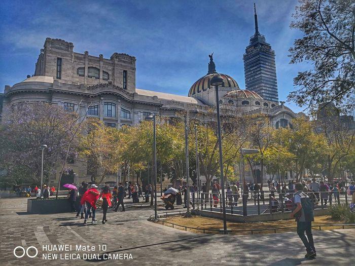 Bellas artes Architecture Palace Ciudad De México Naturalesa🌳🍃