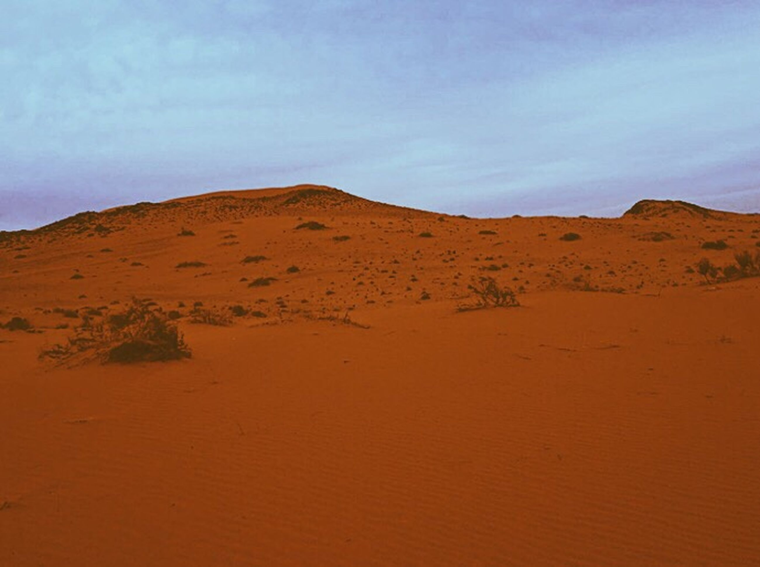 sand, nature, sand dune, sunset, desert, outdoors, sky, red, arid climate, landscape, brown, beauty in nature, textured, no people, day, ecosystem, water, mountain