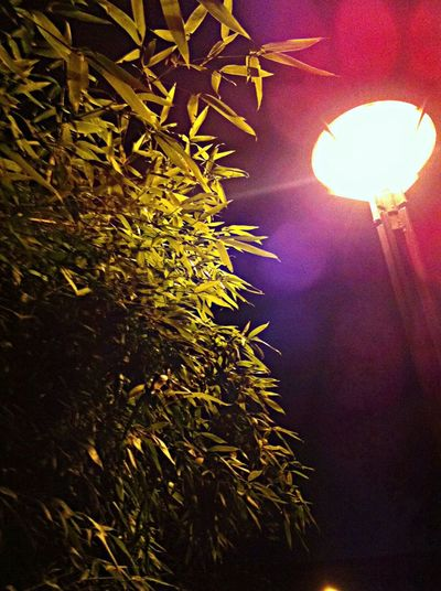 一个人走夜路的心情