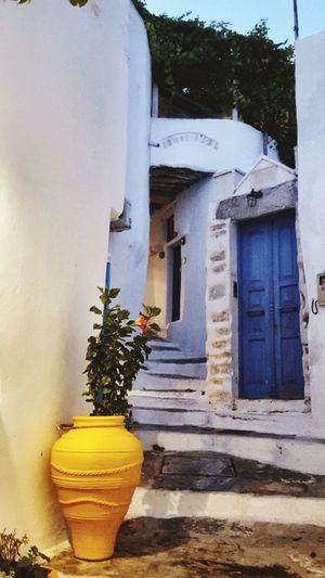 Yellow Vase Blue Door Chora Greece Photos Platka Window Day Flower Whitewashed