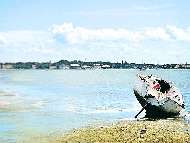 Just a pretty pic Beach Shipwreck Florida