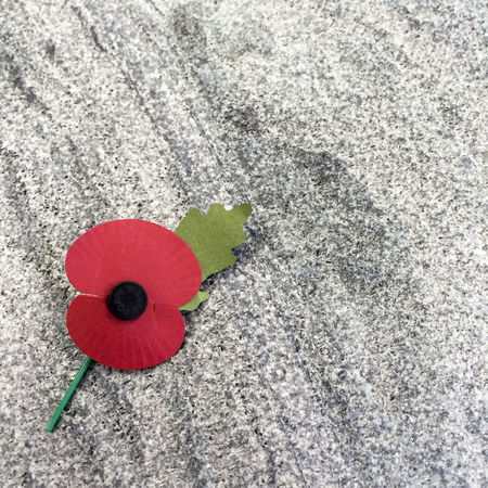 Close up of remembrance day poppy on grey stone background Abstract Appeal Charity Close-up Creativity Design Detail Directly Above Fallen Grey Heroes High Angle View No People Paper Flower Poppy Red Remembering Remembrance Remembrance Day Stone Stone Background Symbol Symbolic  Symbolism Textured