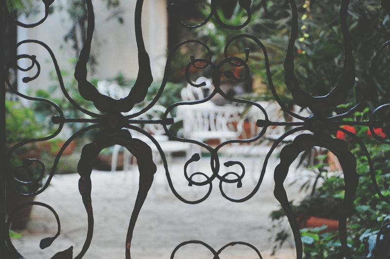 Bokeh Iron Fence Garden Taking Photos Street Photography Streetphotography Fences Relaxing Afternoon Discoveries No Entry Blocked Stuck Life Behind Bars Italy Treviso Traveling Travel Photography