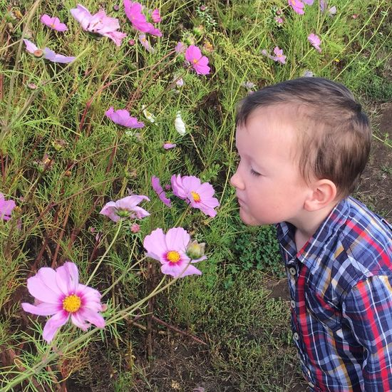 Stopping to smell the flowers. Nature Fall Beauty Kids Colors