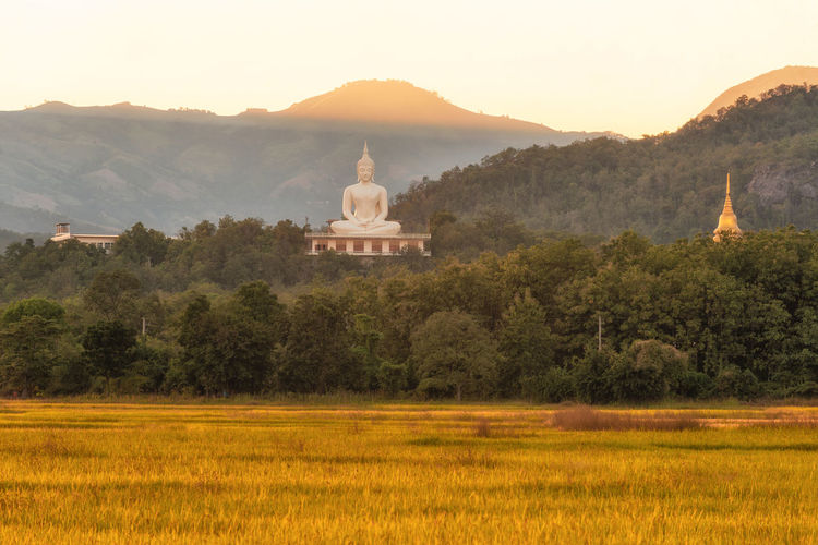 Wat Phra That Doi Lon of nature,Tak Thailand ; Buddha Architecture Beauty In Nature Building Exterior Built Structure Day Growth Landscape Mountain Mountain Range Nature No People Outdoors Place Of Worship Religion Scenics Sky Spirituality Sunset Tranquil Scene Travel Destinations Tree