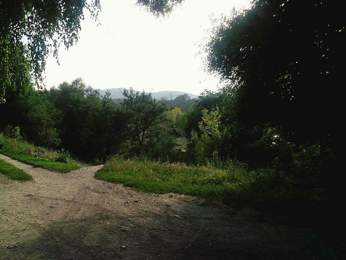 Казахстан Талгар Природа