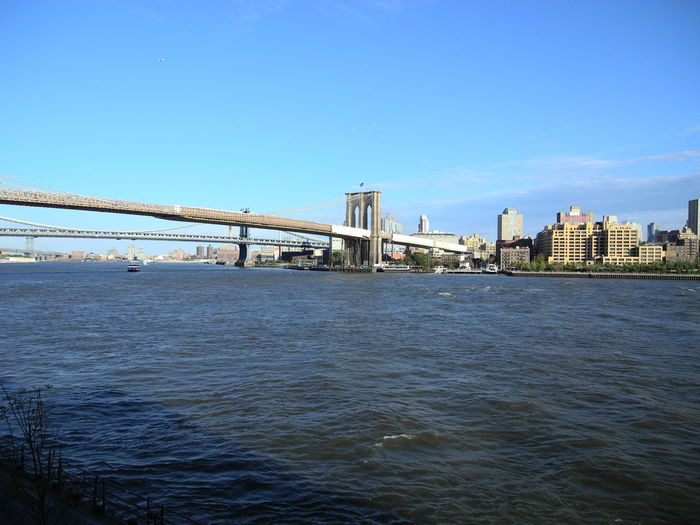 Views of the Brooklyn Bridge Brooklyn Brooklyn Bridge / New York New York City Architectural Column Architecture Bay Blue Bridge Bridge - Man Made Structure Building Exterior Built Structure City Clear Sky Connection Day Engineering Nature Outdoors River Sky Skyscraper Transportation Travel Destinations Water Waterfront