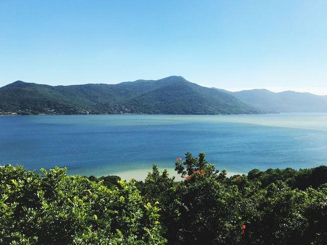 Lagoa da Conceição Nature Tranquility Scenics Blue