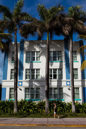 Art deco architecture in Miami Beach, FL. Art Deco Art Deco Architecture Art Deco Style Building Buildings Florida Miami Miami Beach Miami, FL Palm Trees Trees