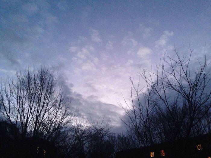 Wintersky Clouds