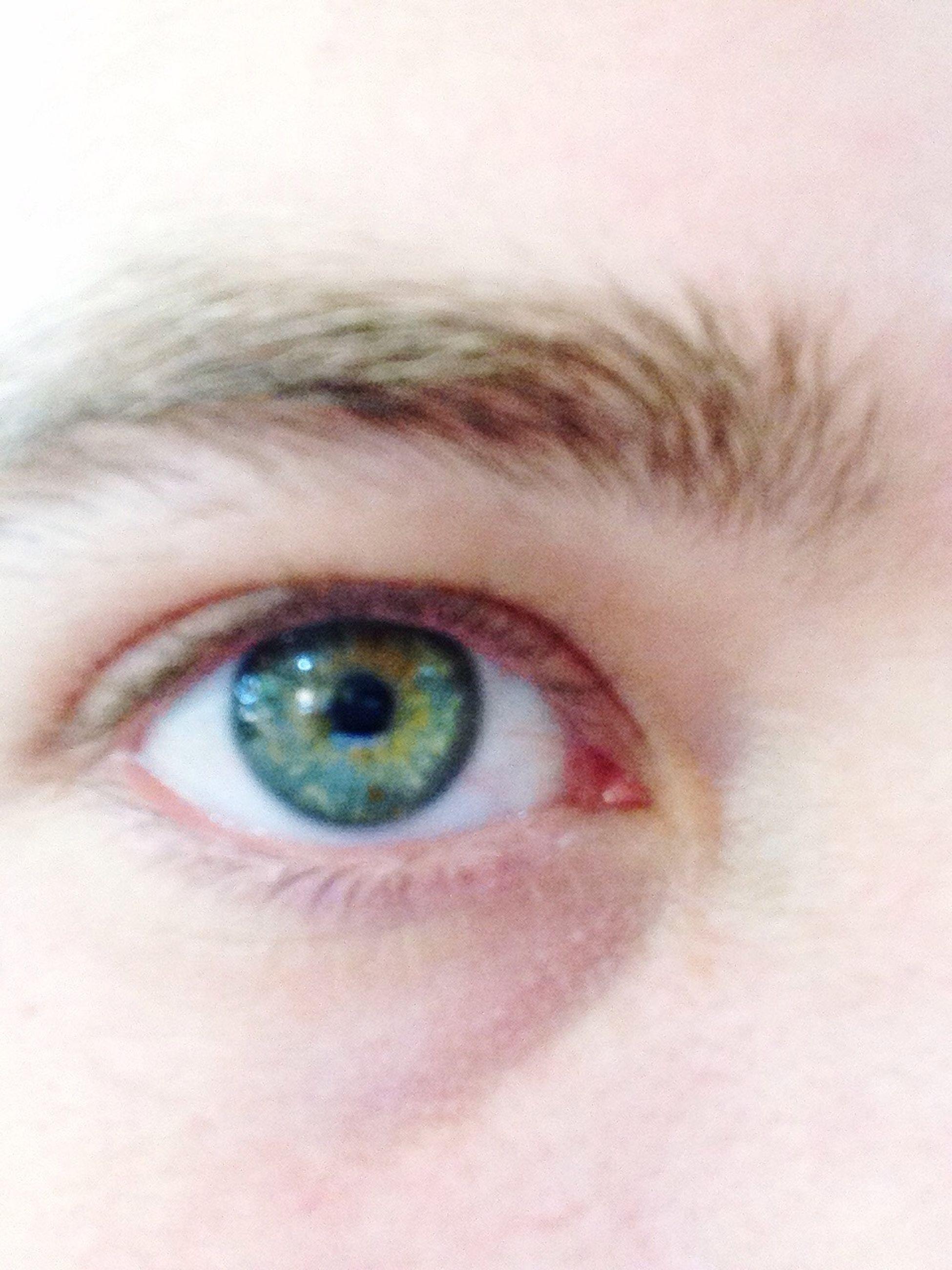 human eye, eyelash, close-up, looking at camera, portrait, eyesight, human face, sensory perception, human skin, part of, headshot, eyebrow, eyeball, extreme close-up, lifestyles, extreme close up, iris - eye