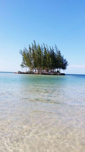 Beach Blue Sea And Blue Sky Sand & Sea No People Trees And Nature Green Nature 🐚beautiful Beach