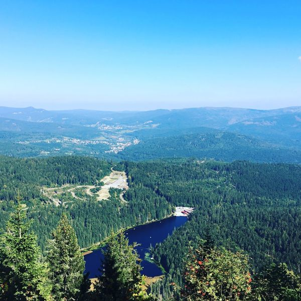 Bayerischer Wald Mountain Nature Tree Scenics Tranquility Tranquil Scene Beauty In Nature Outdoors Blue No People Landscape Sky