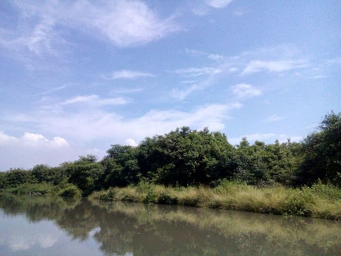 Sisi lain Surabaya Water_collection . Watercolor Water Reflections Ekowisata Mangrove Wonorejo Sparkling Surabaya Camping Travelphotography Adventure